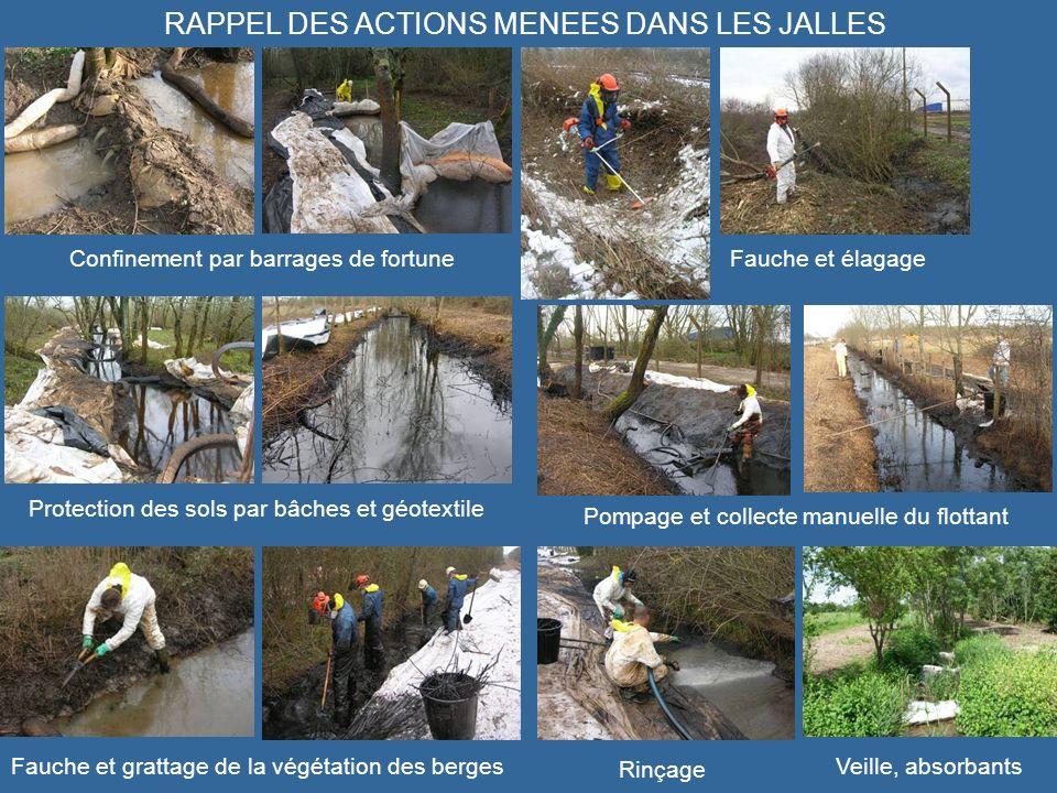 RAPPEL DES ACTIONS MENEES DANS LES JALLES Confinement par barrages de fortuneFauche et élagage Protection des sols par bâches et géotextile Pompage et