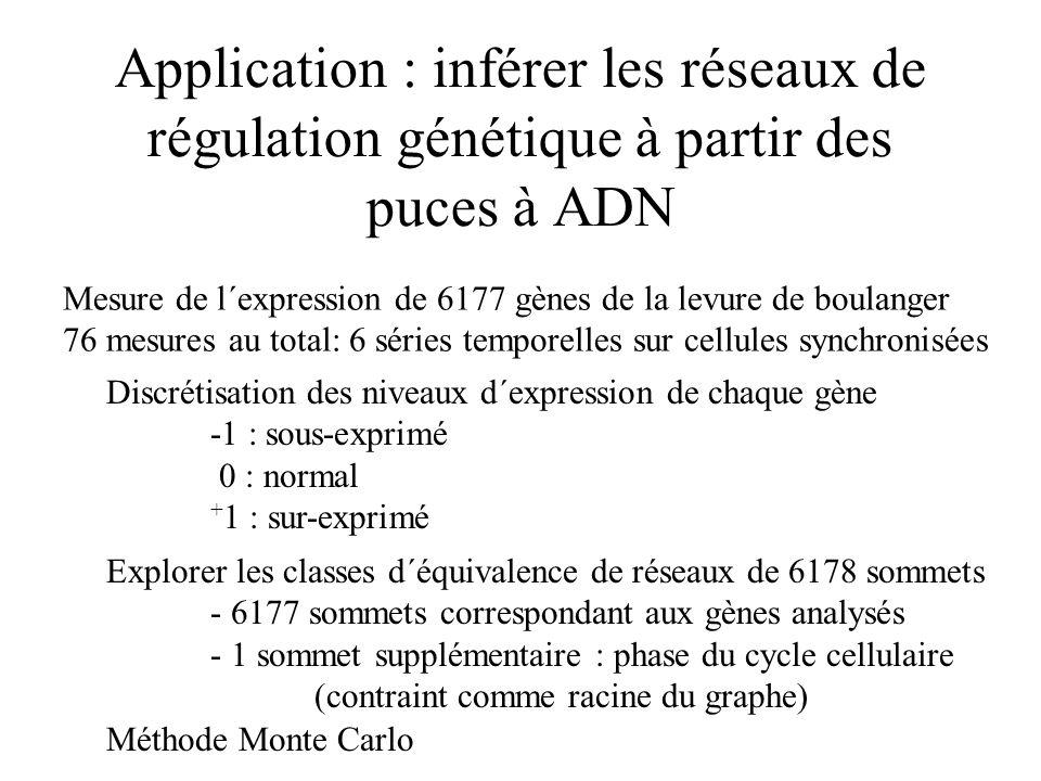 Application : inférer les réseaux de régulation génétique à partir des puces à ADN Mesure de l´expression de 6177 gènes de la levure de boulanger 76 m