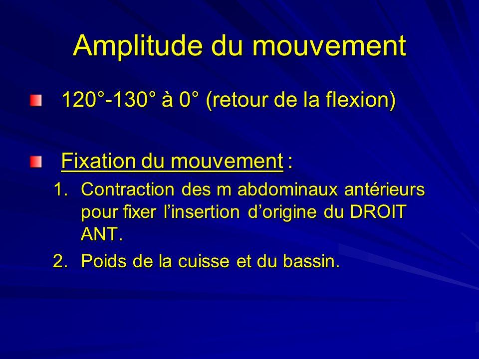 Amplitude du mouvement 120°-130° à 0° (retour de la flexion) Fixation du mouvement : 1.Contraction des m abdominaux antérieurs pour fixer linsertion d