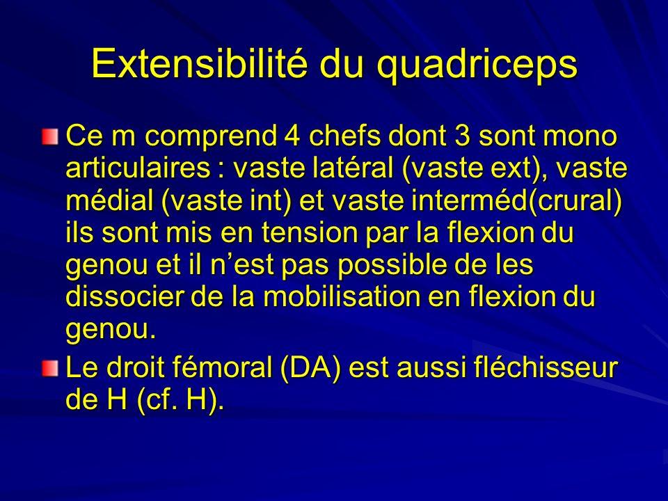 Extensibilité du quadriceps Ce m comprend 4 chefs dont 3 sont mono articulaires : vaste latéral (vaste ext), vaste médial (vaste int) et vaste intermé