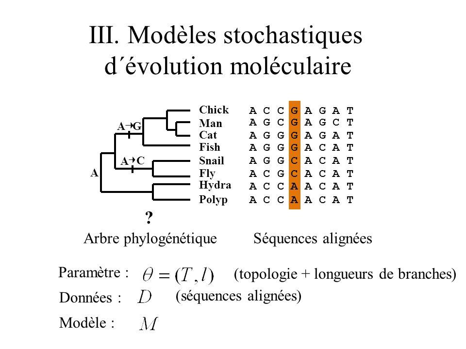 III. Modèles stochastiques d´évolution moléculaire Séquences alignéesArbre phylogénétique ? (topologie + longueurs de branches) Paramètre : Données :