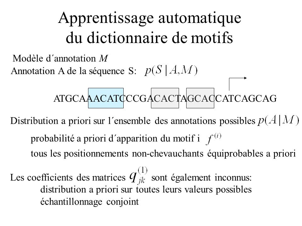 Annotation A de la séquence S: Distribution a priori sur l´ensemble des annotations possibles probabilité a priori d´apparition du motif i tous les po
