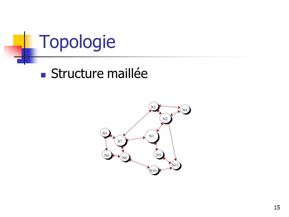 Topologie Structure maillée 15
