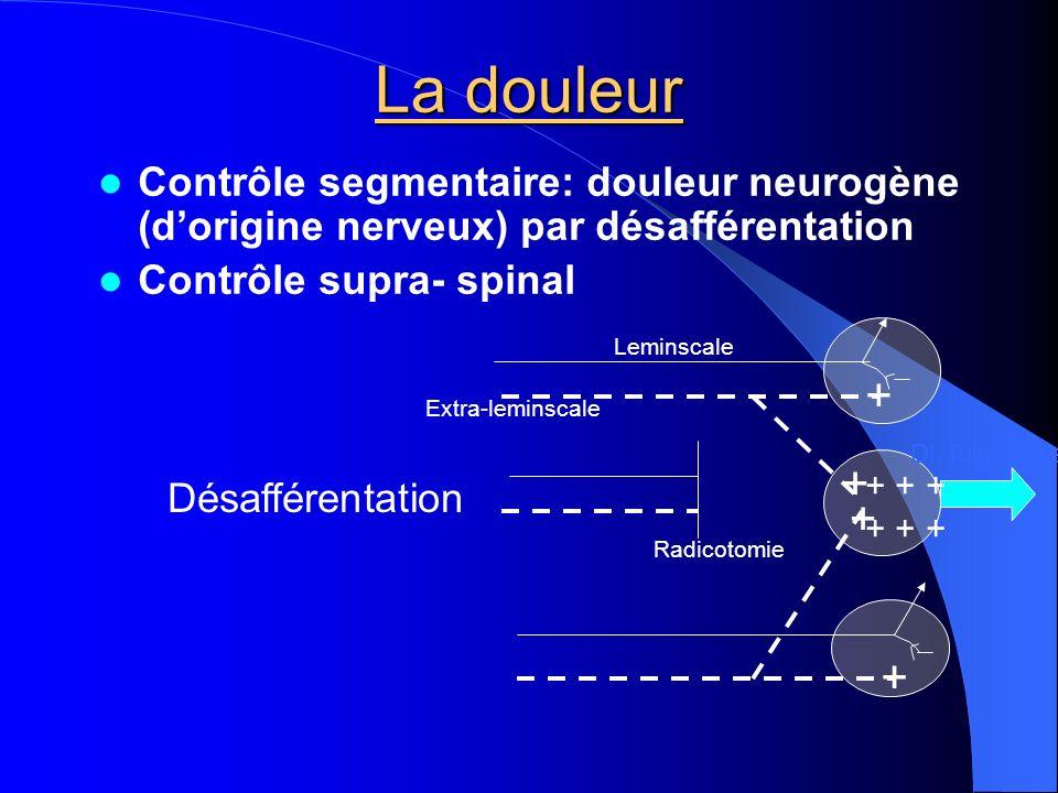 La douleur Contrôle segmentaire: douleur neurogène (dorigine nerveux) par désafférentation Contrôle supra- spinal Radicotomie Extra-leminscale Leminsc