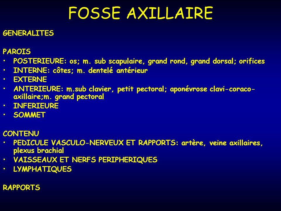FOSSE AXILLAIRE GENERALITES PAROIS POSTERIEURE: os; m.
