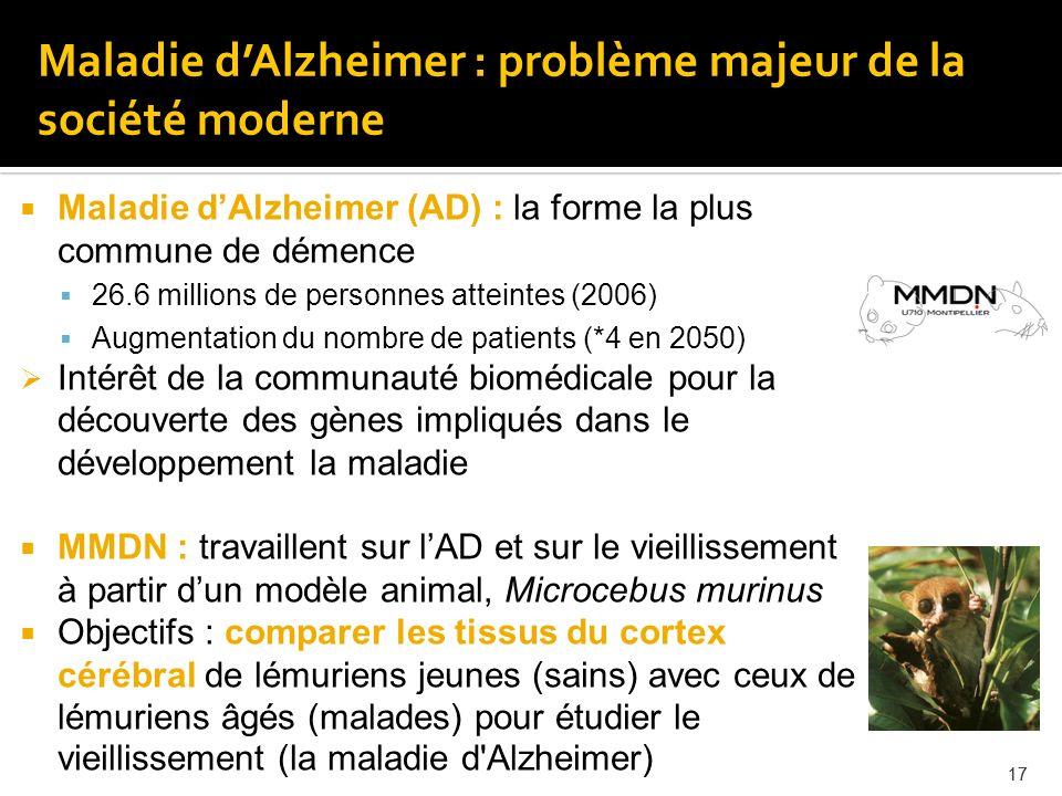 17 Maladie dAlzheimer (AD) : la forme la plus commune de démence 26.6 millions de personnes atteintes (2006) Augmentation du nombre de patients (*4 en