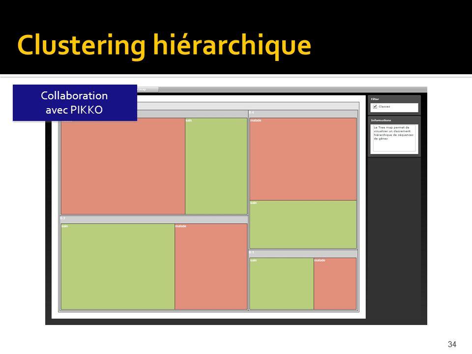34 Collaboration avec PIKKO Collaboration avec PIKKO Clustering hiérarchique
