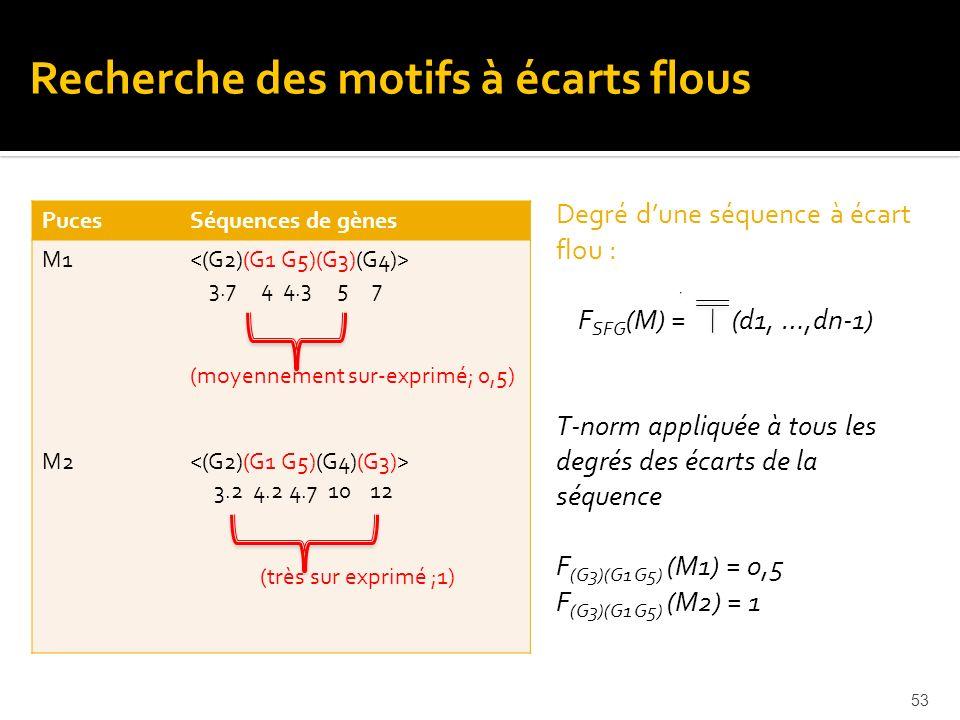 53 PucesSéquences de gènes M1 M2 3.7 4 4.3 5 7 (moyennement sur-exprimé; 0,5) 3.2 4.2 4.7 10 12 (très sur exprimé ;1) Degré dune séquence à écart flou