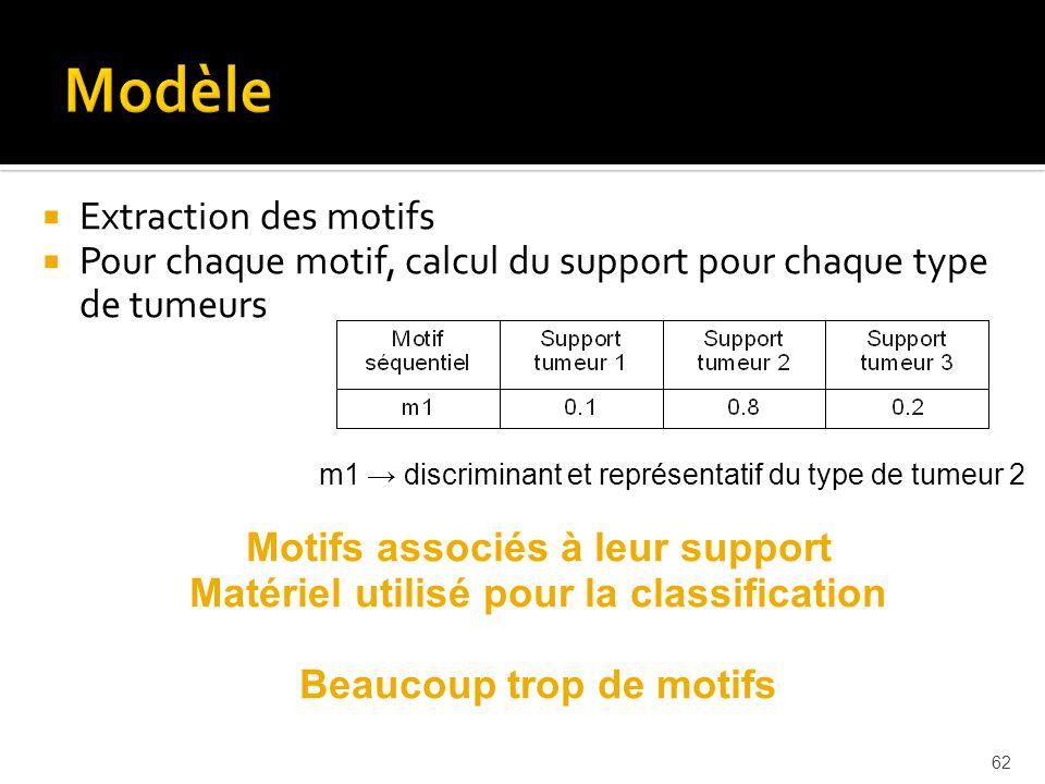 62 Extraction des motifs Pour chaque motif, calcul du support pour chaque type de tumeurs m1 discriminant et représentatif du type de tumeur 2 Motifs