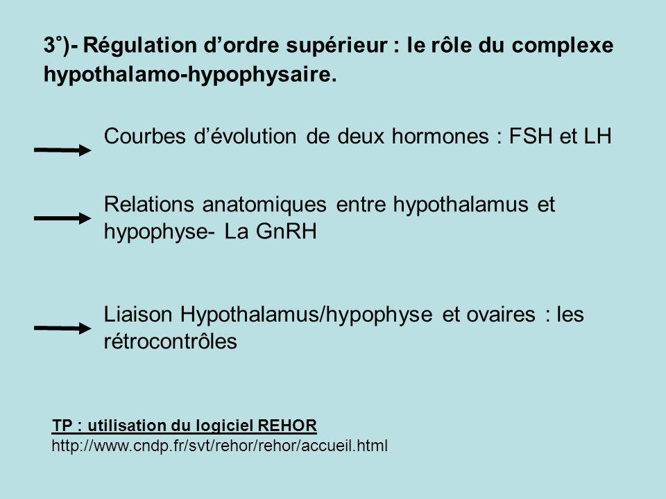 3°)- Régulation dordre supérieur : le rôle du complexe hypothalamo-hypophysaire.