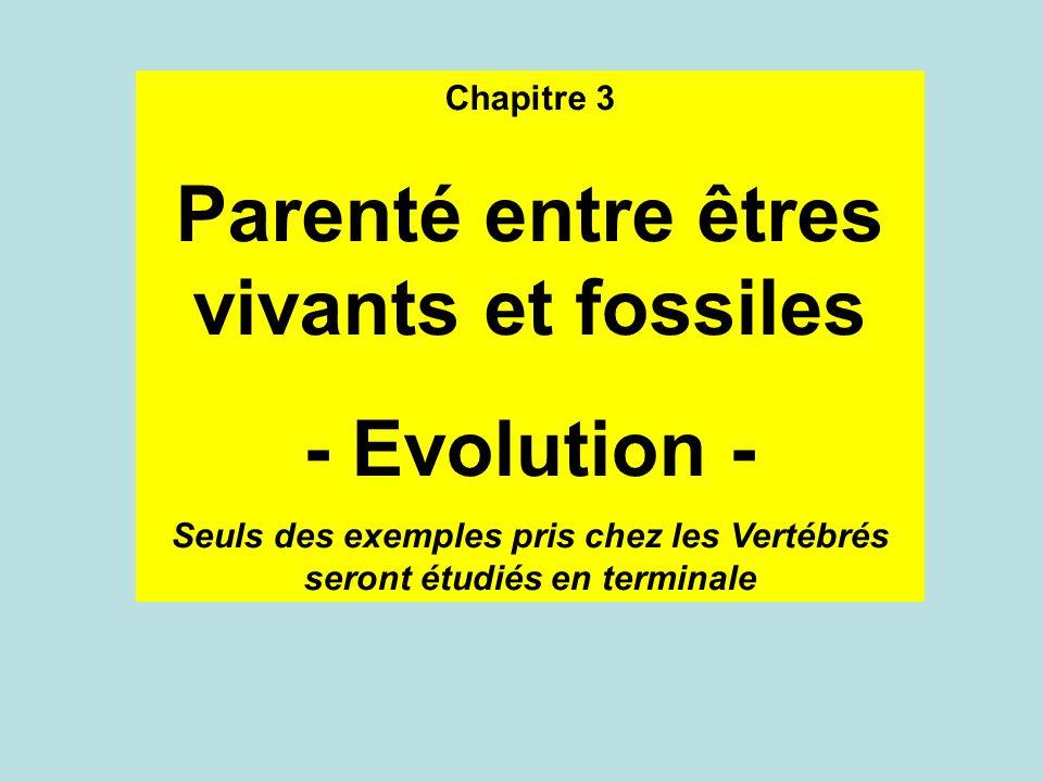 Chapitre 3 Parenté entre êtres vivants et fossiles - Evolution - Seuls des exemples pris chez les Vertébrés seront étudiés en terminale