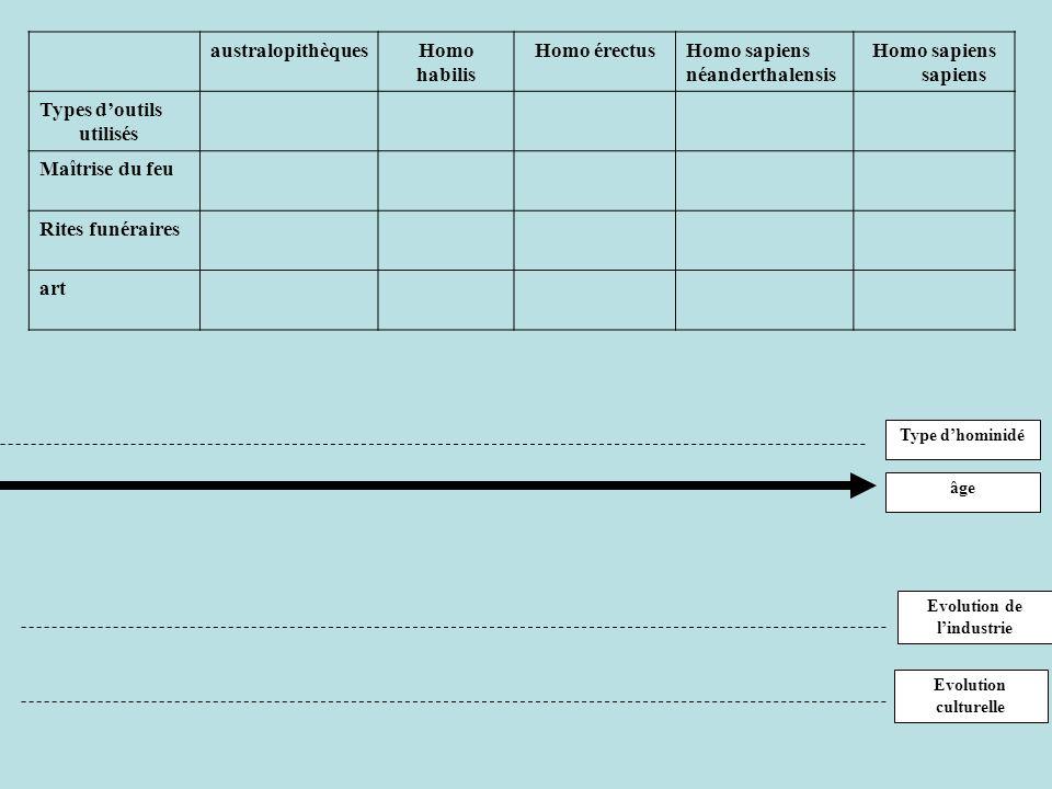 australopithèquesHomo habilis Homo érectusHomo sapiens néanderthalensis Homo sapiens sapiens Types doutils utilisés Maîtrise du feu Rites funéraires art Type dhominidé âge Evolution culturelle Evolution de lindustrie