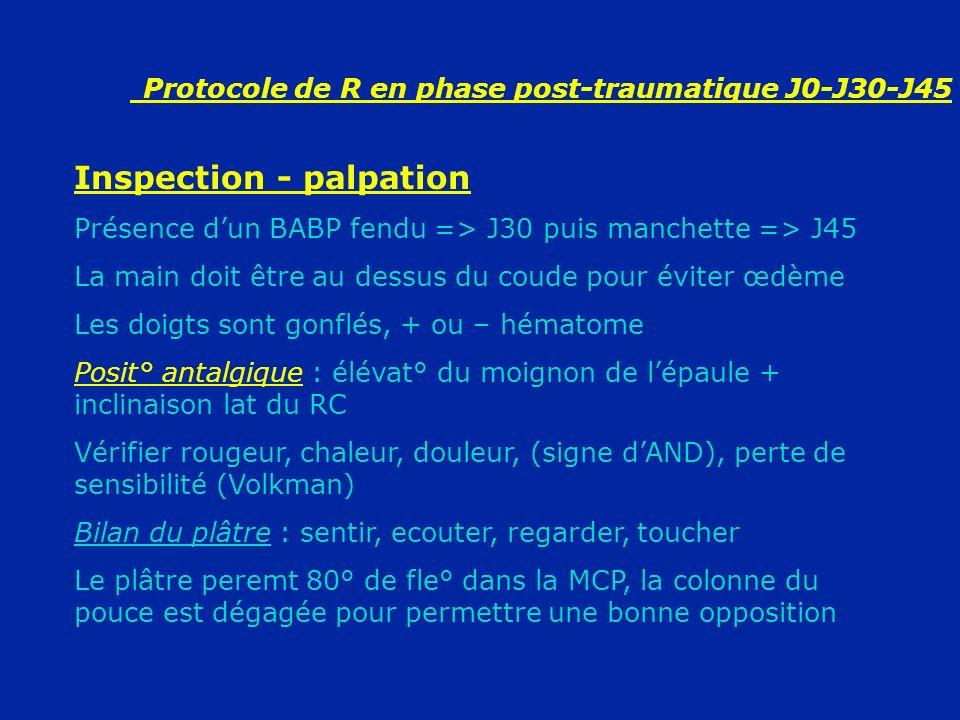 Protocole de R en phase post-traumatique J0-J30-J45 Inspection - palpation Présence dun BABP fendu => J30 puis manchette => J45 La main doit être au d