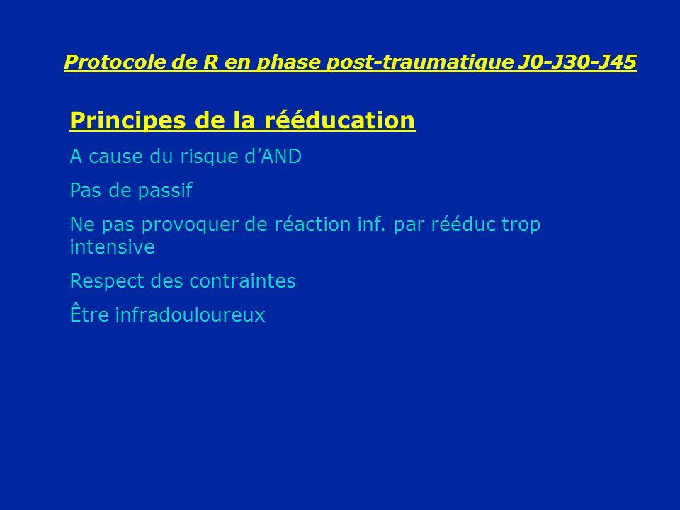 Protocole de R en phase post-traumatique J0-J30-J45 Principes de la rééducation A cause du risque dAND Pas de passif Ne pas provoquer de réaction inf.