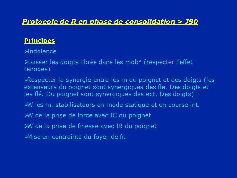 Protocole de R en phase de consolidation > J90 Principes Indolence Laisser les doigts libres dans les mob° (respecter leffet ténodes) Respecter la syn
