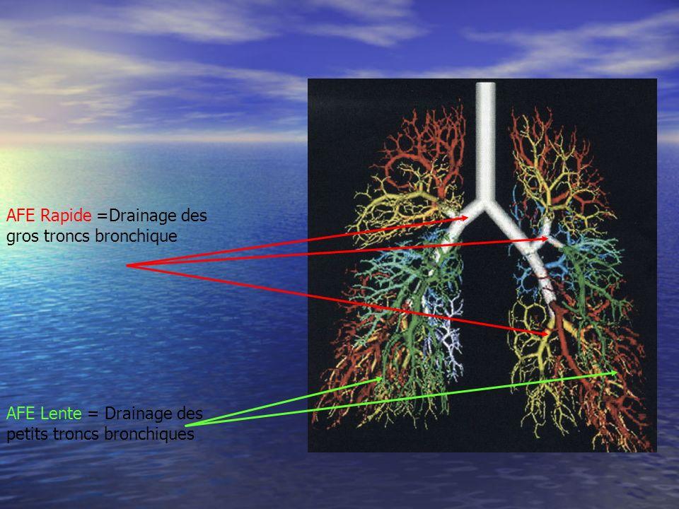 AFE Rapide =Drainage des gros troncs bronchique AFE Lente = Drainage des petits troncs bronchiques