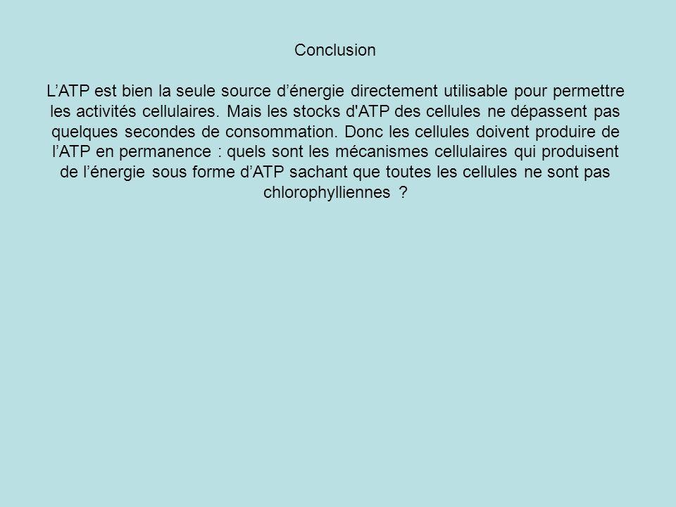 Conclusion LATP est bien la seule source dénergie directement utilisable pour permettre les activités cellulaires. Mais les stocks d'ATP des cellules