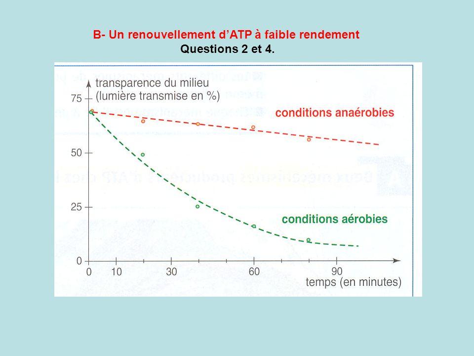 B- Un renouvellement dATP à faible rendement Questions 2 et 4.