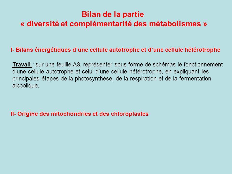 Bilan de la partie « diversité et complémentarité des métabolismes » I- Bilans énergétiques dune cellule autotrophe et dune cellule hétérotrophe Trava