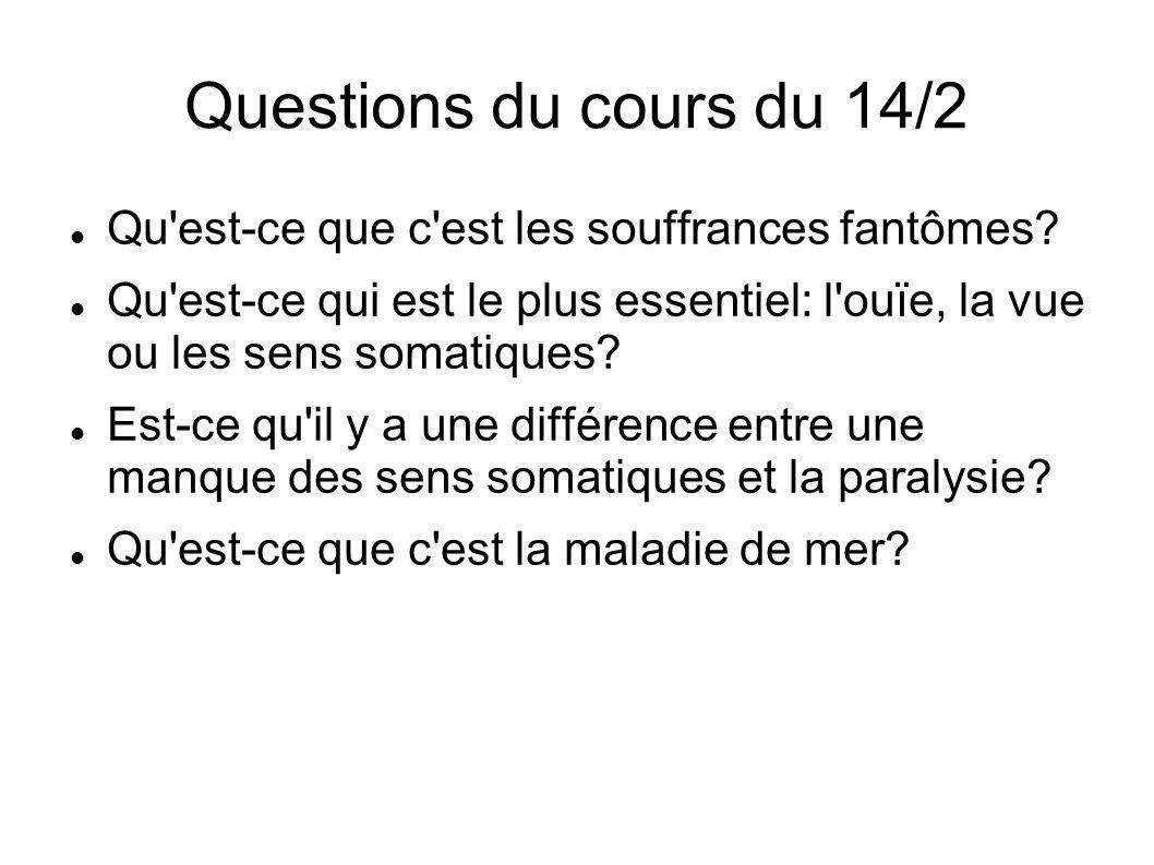 Questions du cours du 14/2 Qu est-ce que c est les souffrances fantômes.