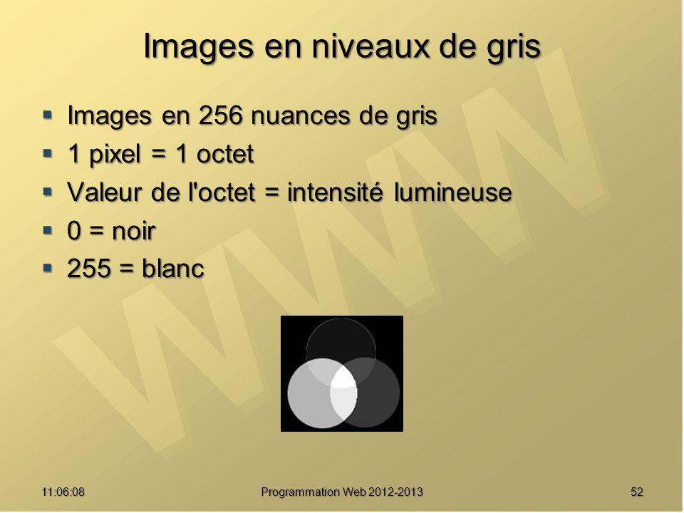 5211:07:59 Images en niveaux de gris Images en 256 nuances de gris Images en 256 nuances de gris 1 pixel = 1 octet 1 pixel = 1 octet Valeur de l octet = intensité lumineuse Valeur de l octet = intensité lumineuse 0 = noir 0 = noir 255 = blanc 255 = blanc Programmation Web 2012-2013