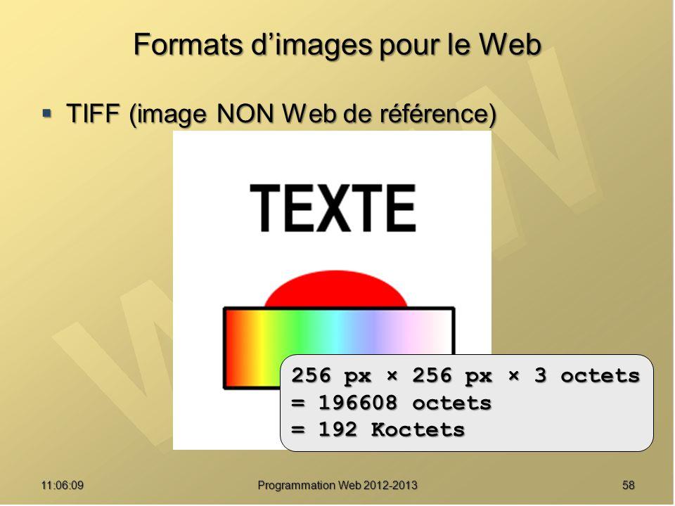 5811:07:59 Formats dimages pour le Web TIFF (image NON Web de référence) TIFF (image NON Web de référence) 192 Ko 256 px × 256 px × 3 octets = 196608 octets = 192 Koctets Programmation Web 2012-2013