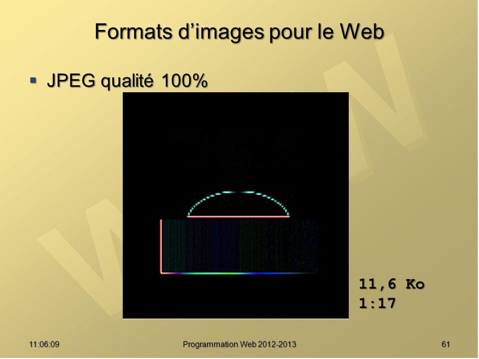 6111:07:59 Formats dimages pour le Web JPEG qualité 100% JPEG qualité 100% 11,6 Ko 1:17 Programmation Web 2012-2013