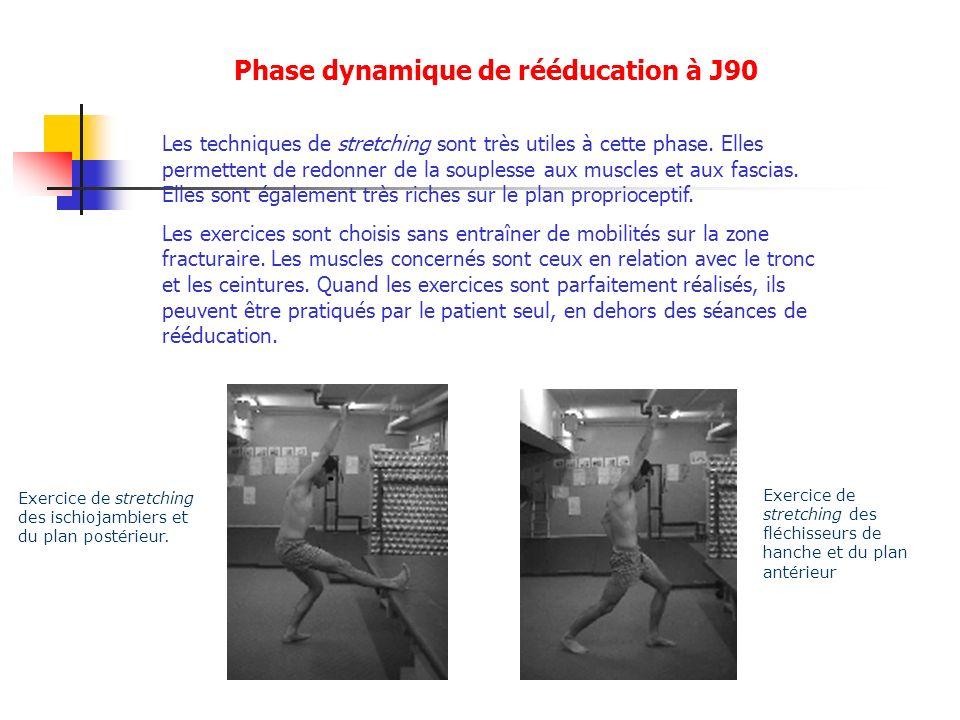 Les techniques de stretching sont très utiles à cette phase. Elles permettent de redonner de la souplesse aux muscles et aux fascias. Elles sont égale