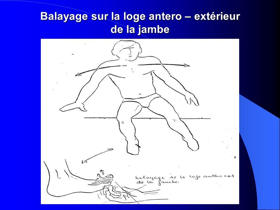 Balayage sur la loge antero – extérieur de la jambe