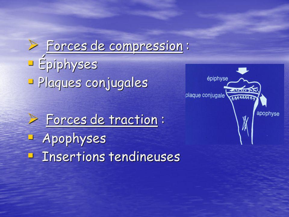 Forces de compression : Forces de compression : Épiphyses Épiphyses Plaques conjugales Plaques conjugales Forces de traction : Forces de traction : Ap