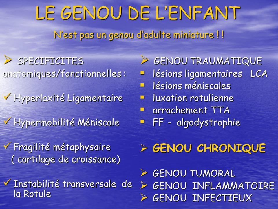 LE GENOU DE LENFANT Nest pas un genou dadulte miniature ! ! LE GENOU DE LENFANT Nest pas un genou dadulte miniature ! ! SPECIFICITES SPECIFICITES anat