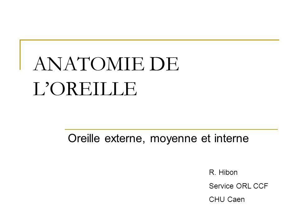 ANATOMIE DE LOREILLE Oreille externe, moyenne et interne R. Hibon Service ORL CCF CHU Caen