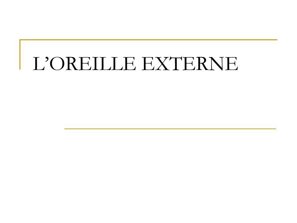 LOREILLE EXTERNE