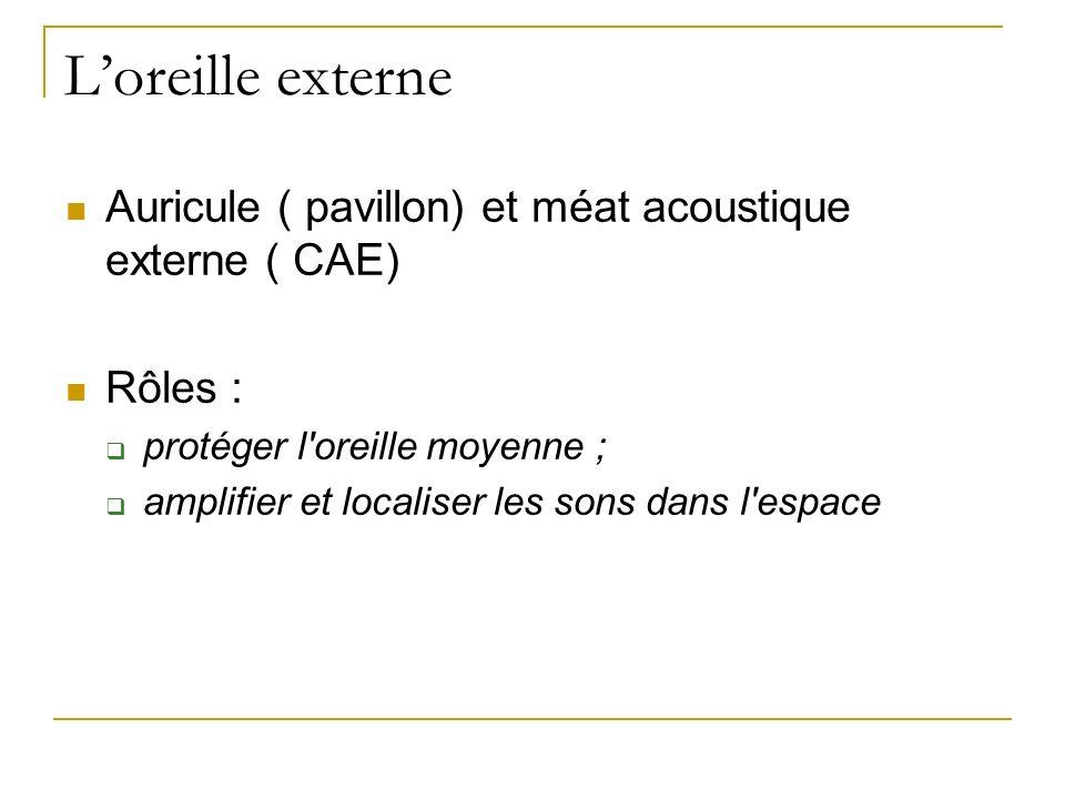 Loreille externe Auricule ( pavillon) et méat acoustique externe ( CAE) Rôles : protéger l'oreille moyenne ; amplifier et localiser les sons dans l'es