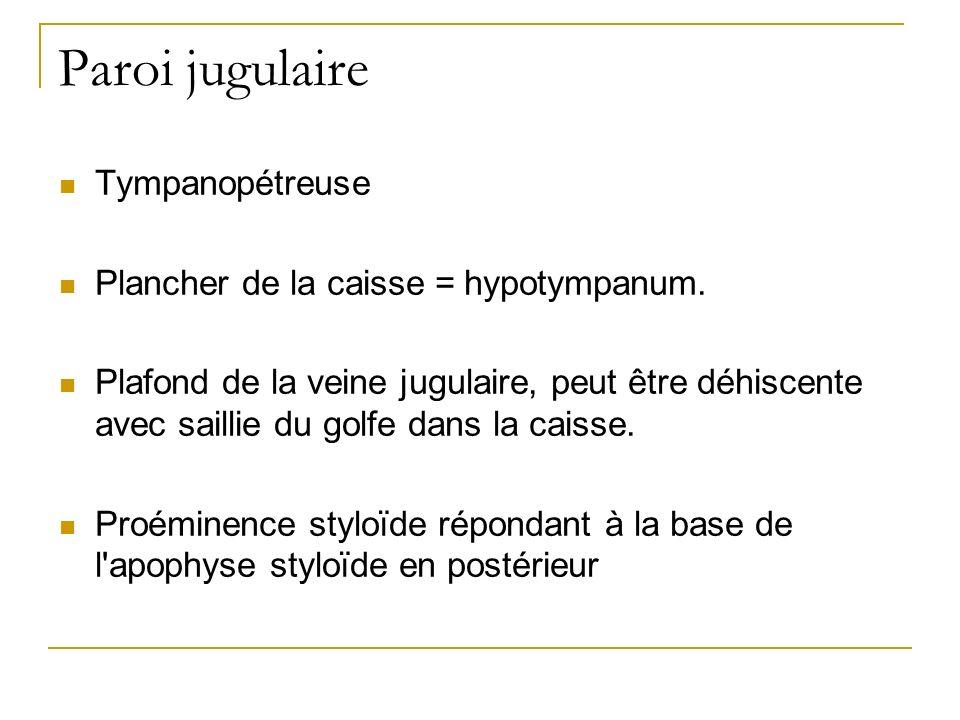 Paroi jugulaire Tympanopétreuse Plancher de la caisse = hypotympanum. Plafond de la veine jugulaire, peut être déhiscente avec saillie du golfe dans l