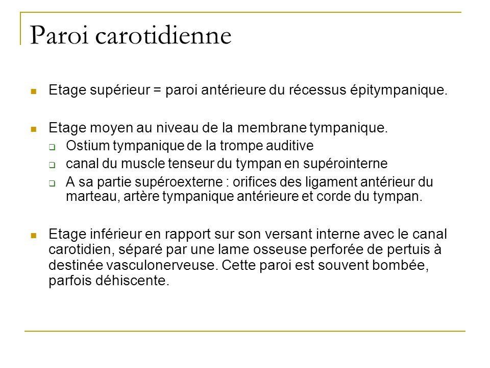 Paroi carotidienne Etage supérieur = paroi antérieure du récessus épitympanique. Etage moyen au niveau de la membrane tympanique. Ostium tympanique de
