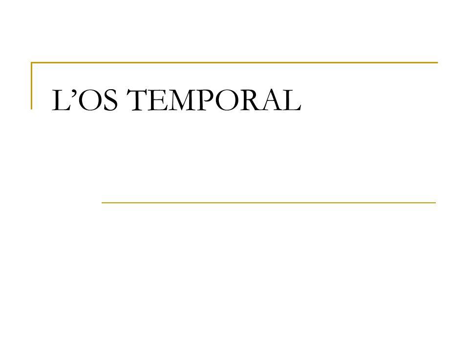 LOS TEMPORAL