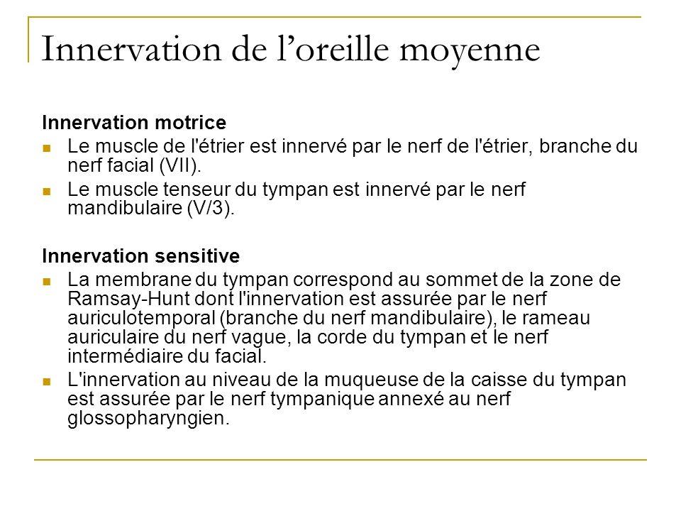 Innervation de loreille moyenne Innervation motrice Le muscle de l'étrier est innervé par le nerf de l'étrier, branche du nerf facial (VII). Le muscle