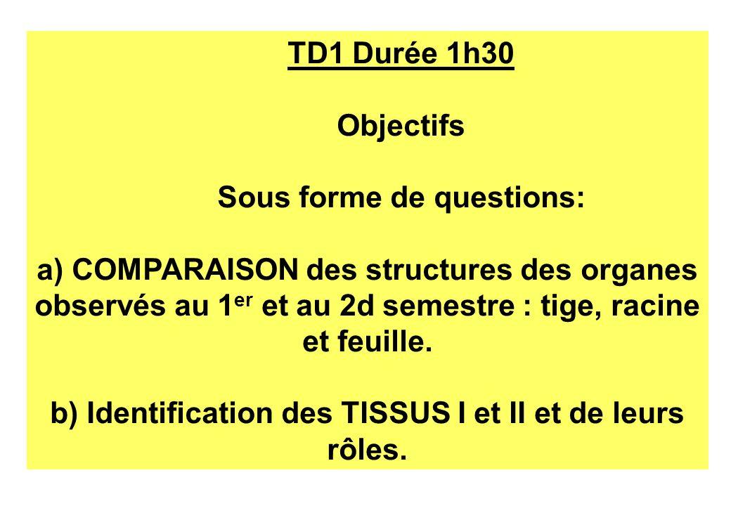 TD1 Durée 1h30 Objectifs Sous forme de questions: a) COMPARAISON des structures des organes observés au 1 er et au 2d semestre : tige, racine et feuil
