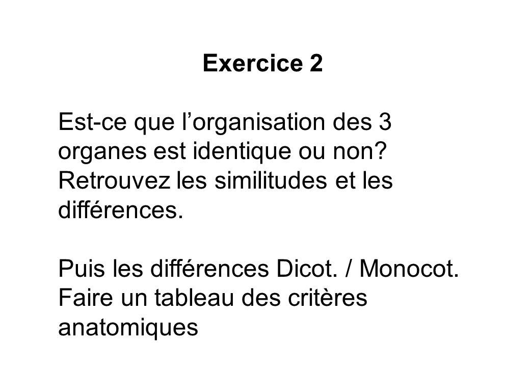 Exercice 2 Est-ce que lorganisation des 3 organes est identique ou non? Retrouvez les similitudes et les différences. Puis les différences Dicot. / Mo