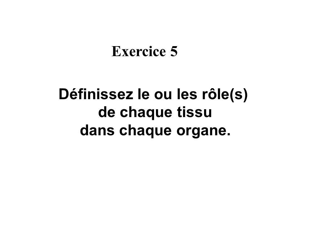 Définissez le ou les rôle(s) de chaque tissu dans chaque organe. Exercice 5