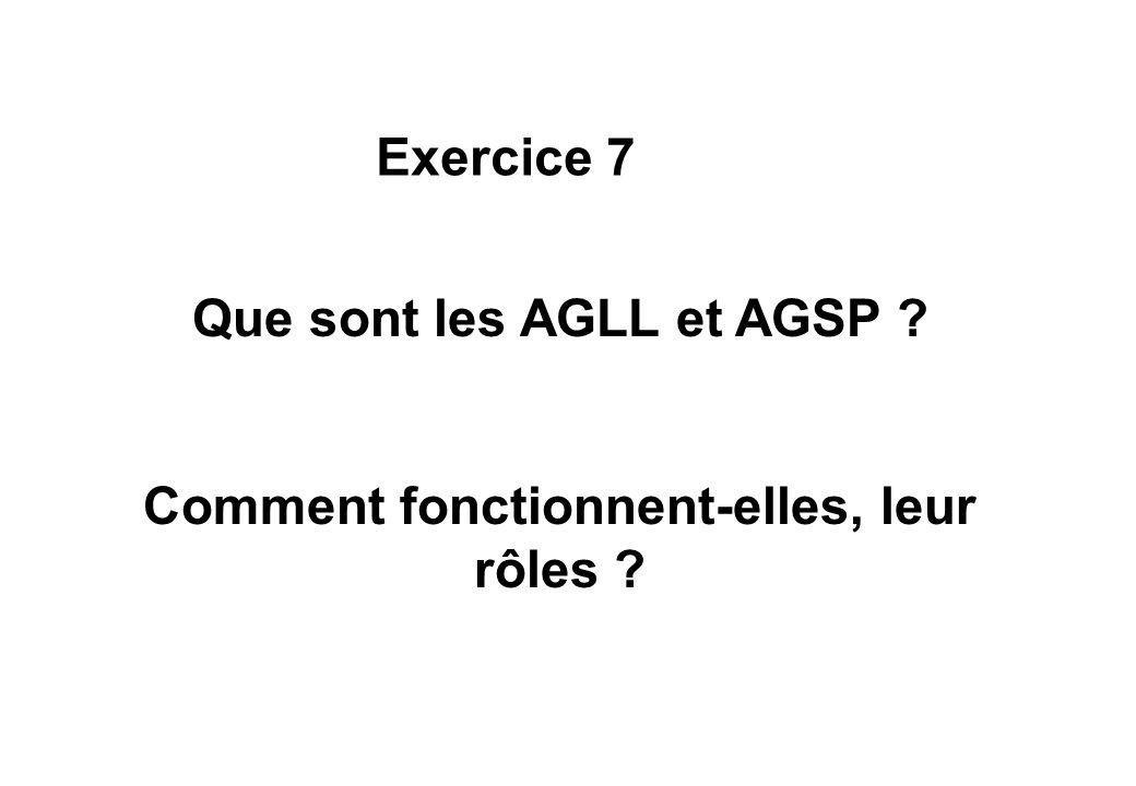 Que sont les AGLL et AGSP ? Comment fonctionnent-elles, leur rôles ? Exercice 7