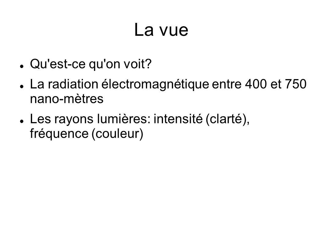 La vue Qu'est-ce qu'on voit? La radiation électromagnétique entre 400 et 750 nano-mètres Les rayons lumières: intensité (clarté), fréquence (couleur)