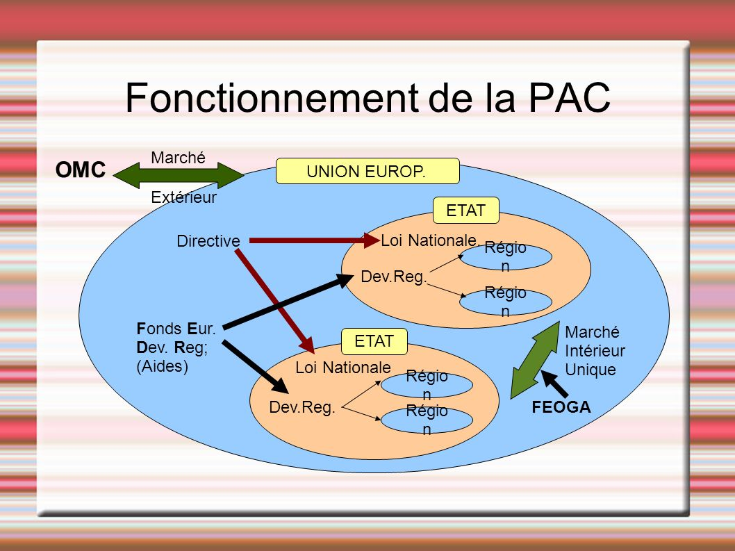 Fonctionnement de la PAC UNION EUROP. ETAT Régio n Loi Nationale. Loi Nationale Dev.Reg. Directive Fonds Eur. Dev. Reg; (Aides) Marché Intérieur Uniqu
