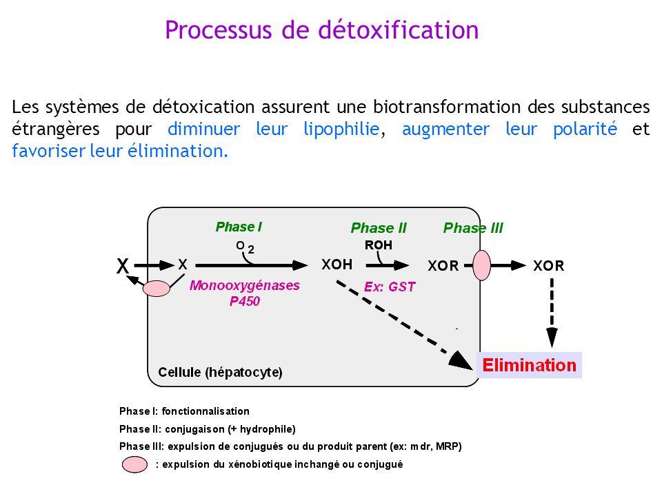 Processus de détoxification Les systèmes de détoxication assurent une biotransformation des substances étrangères pour diminuer leur lipophilie, augme