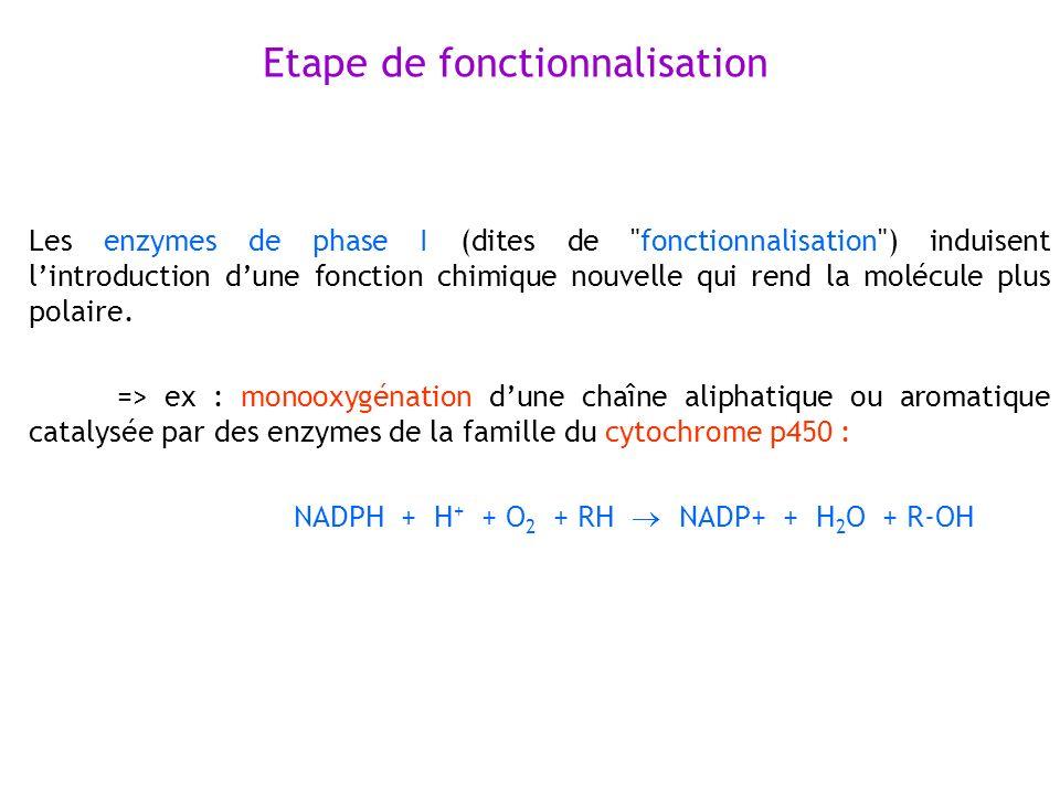 Etape de fonctionnalisation Les enzymes de phase I (dites de
