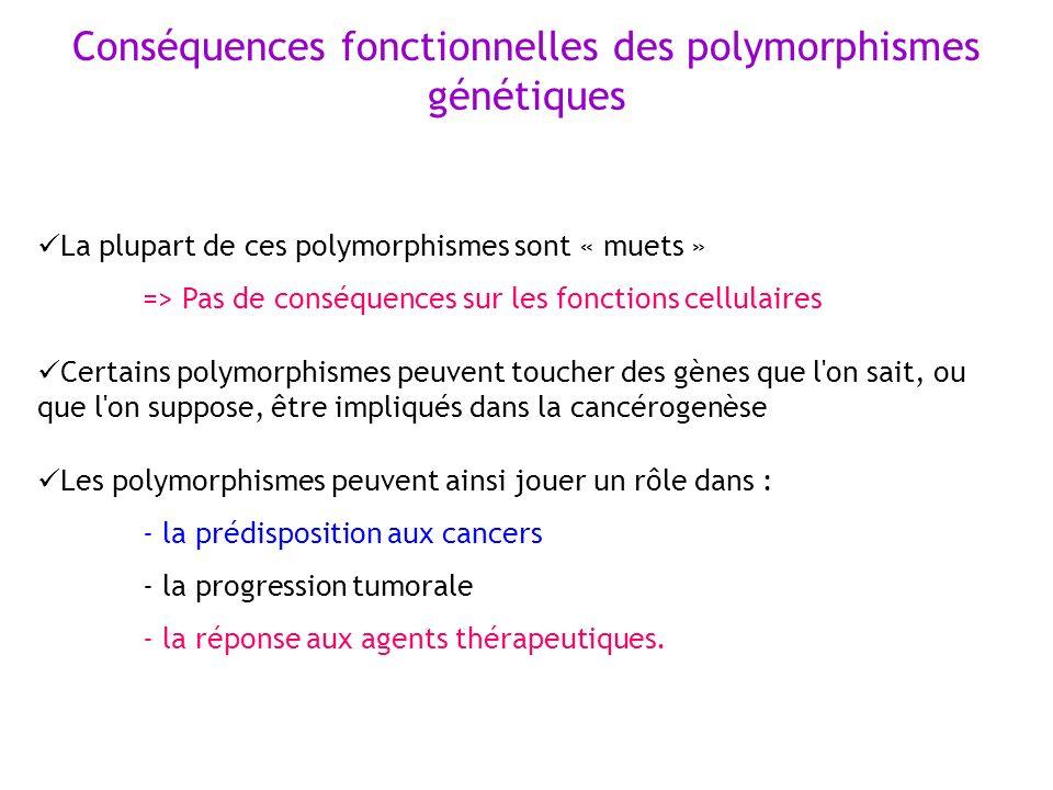 La plupart de ces polymorphismes sont « muets » => Pas de conséquences sur les fonctions cellulaires Certains polymorphismes peuvent toucher des gènes