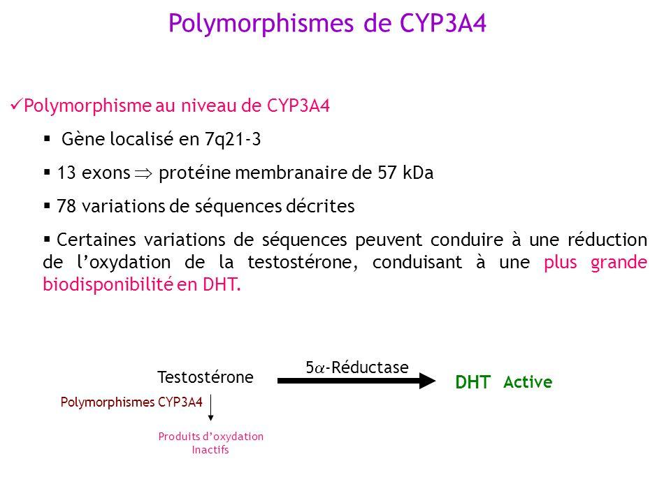 Polymorphismes de CYP3A4 Polymorphisme au niveau de CYP3A4 Gène localisé en 7q21-3 13 exons protéine membranaire de 57 kDa 78 variations de séquences