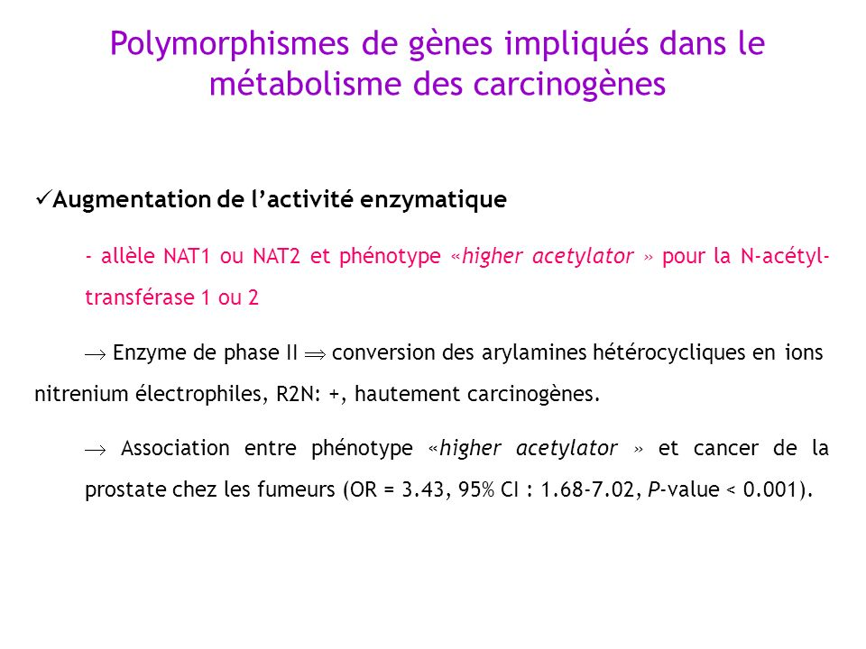 Augmentation de lactivité enzymatique - allèle NAT1 ou NAT2 et phénotype «higher acetylator » pour la N-acétyl- transférase 1 ou 2 Enzyme de phase II