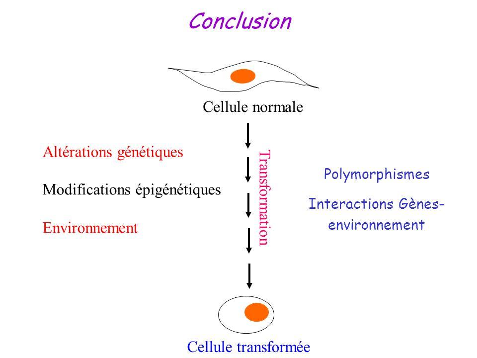 Conclusion Polymorphismes Interactions Gènes- environnement Cellule transformée Altérations génétiques Modifications épigénétiques Environnement Trans